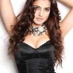 Ameesha Patel Body Measurements