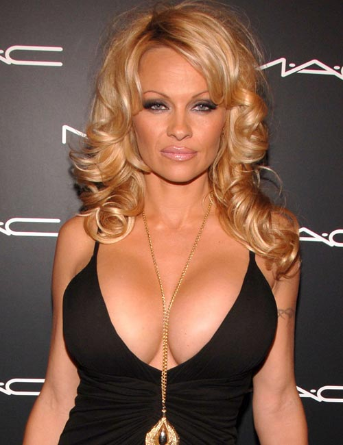 Pamela Anderson Body Measurements - Celebrity Bra Size ...