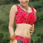 Aditi Sharma Body Measurements and Net Worth