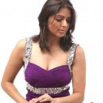 Bhumika Chawla Body Measurements and Net Worth
