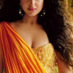 Sonakshi Sinha Body Measurements and Net Worth
