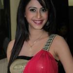 Hina Khan Body Measurements and Net Worth