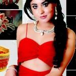Kritika Kamra Body Measurements and Net Worth