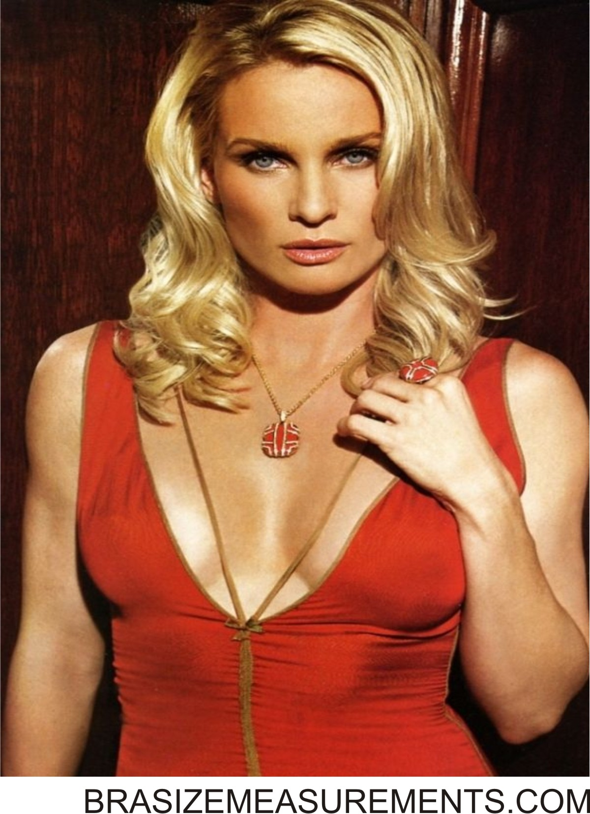 Nicolette Sheridan nudes (44 photo), fotos Bikini, YouTube, lingerie 2019