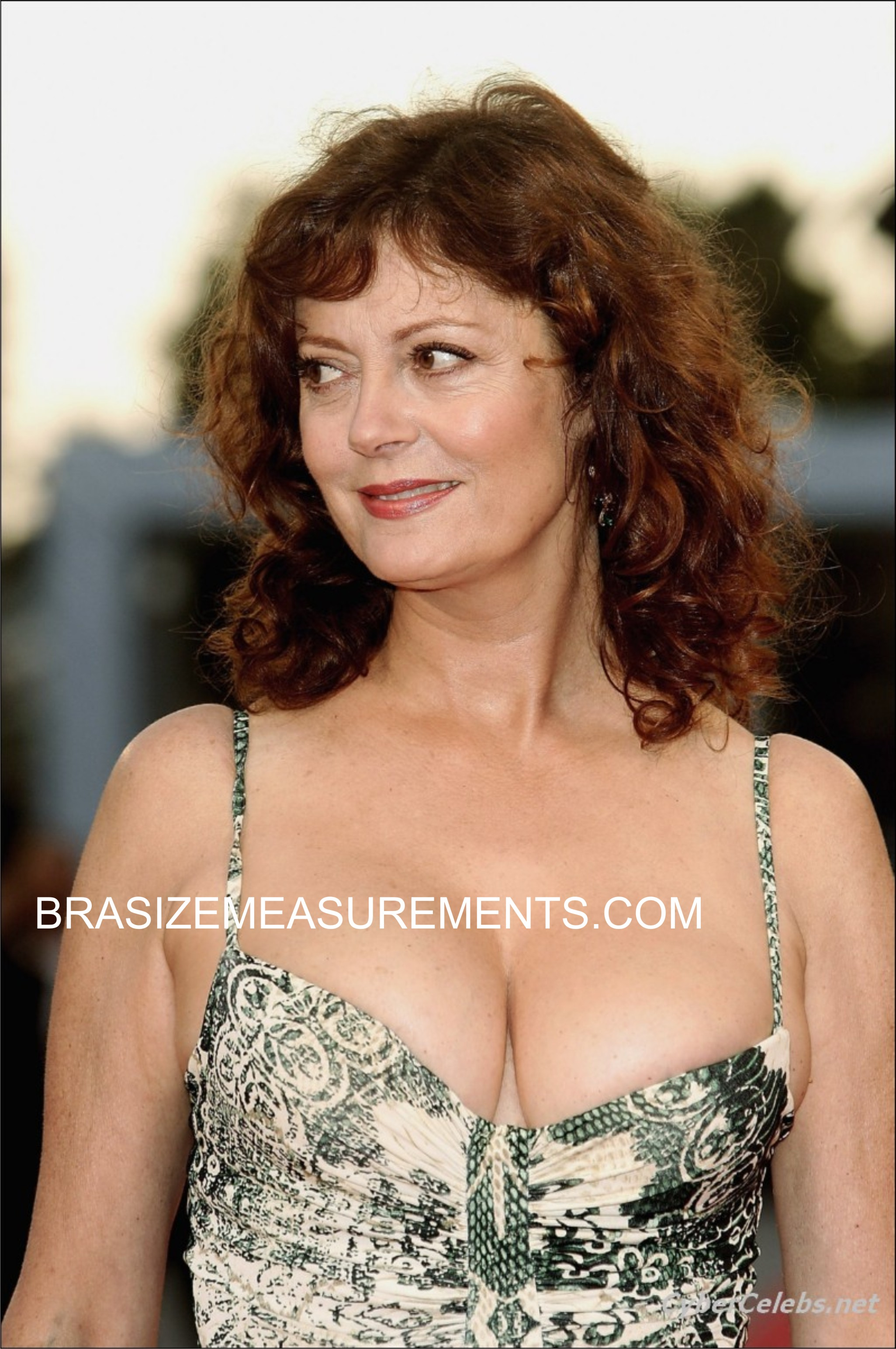 Susan Sarandon Bra Size and Body Measurements - Celebrity ...
