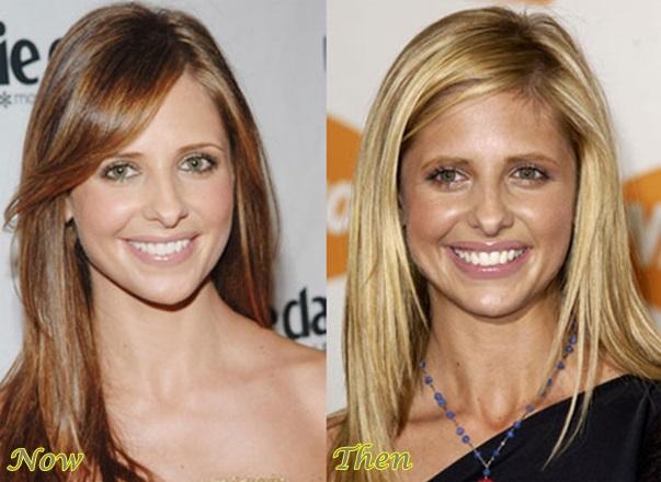Bad Sarah Michelle Gellar Nose Job Surgery Celebrity Bra